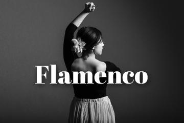 artes danza flamenco