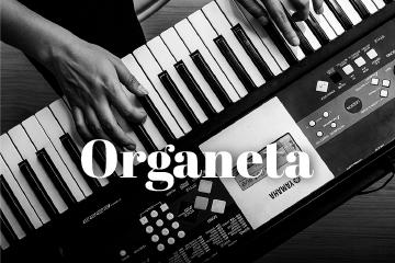 artes música organeta